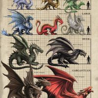 AN78 Dragon Size Comparison Chart