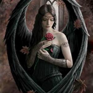 Angel Rose Anne Stokes card AN36