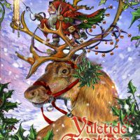 BY21 - Guided by the Northern Lights Briar Yule card