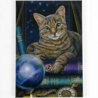 fortune-teller-fm56723b