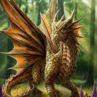Friendly Dragon Anne Stokes birthday card AN16