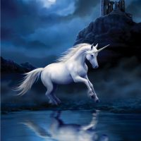 Moonlight Unicorn Anne Stokes card AN32
