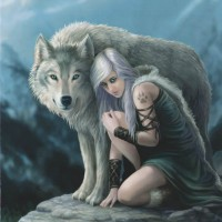 Protector Anne Stokes wolf card AN45 front